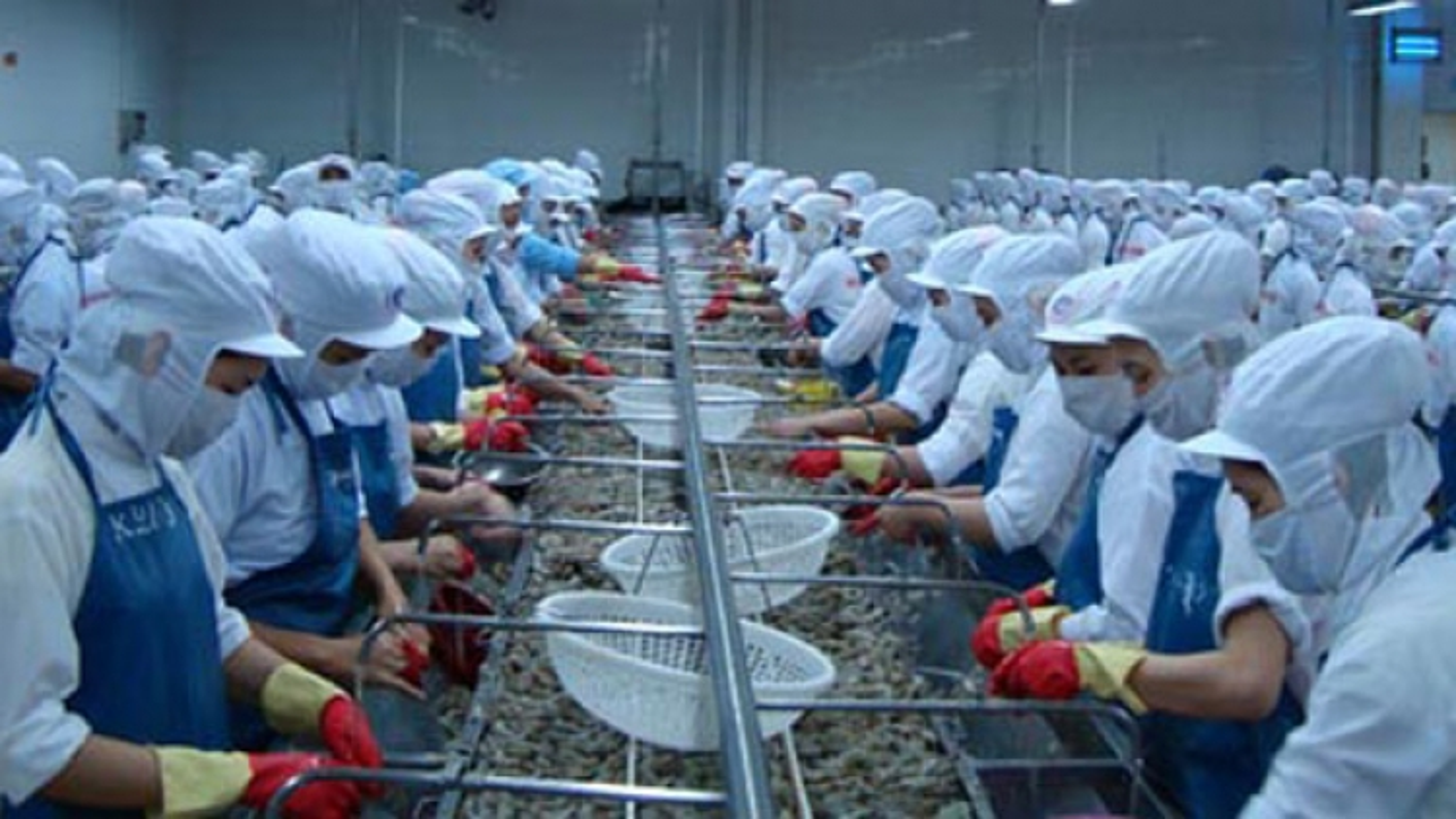 June shrimp exports to US slide, cloud economic outlook