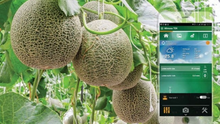 Vietnam moves towards high-tech agriculture