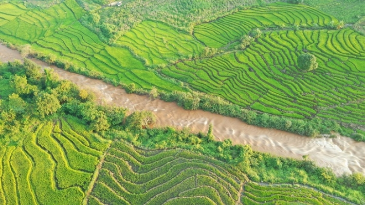 Discovering terraced fields of Chu Se from height