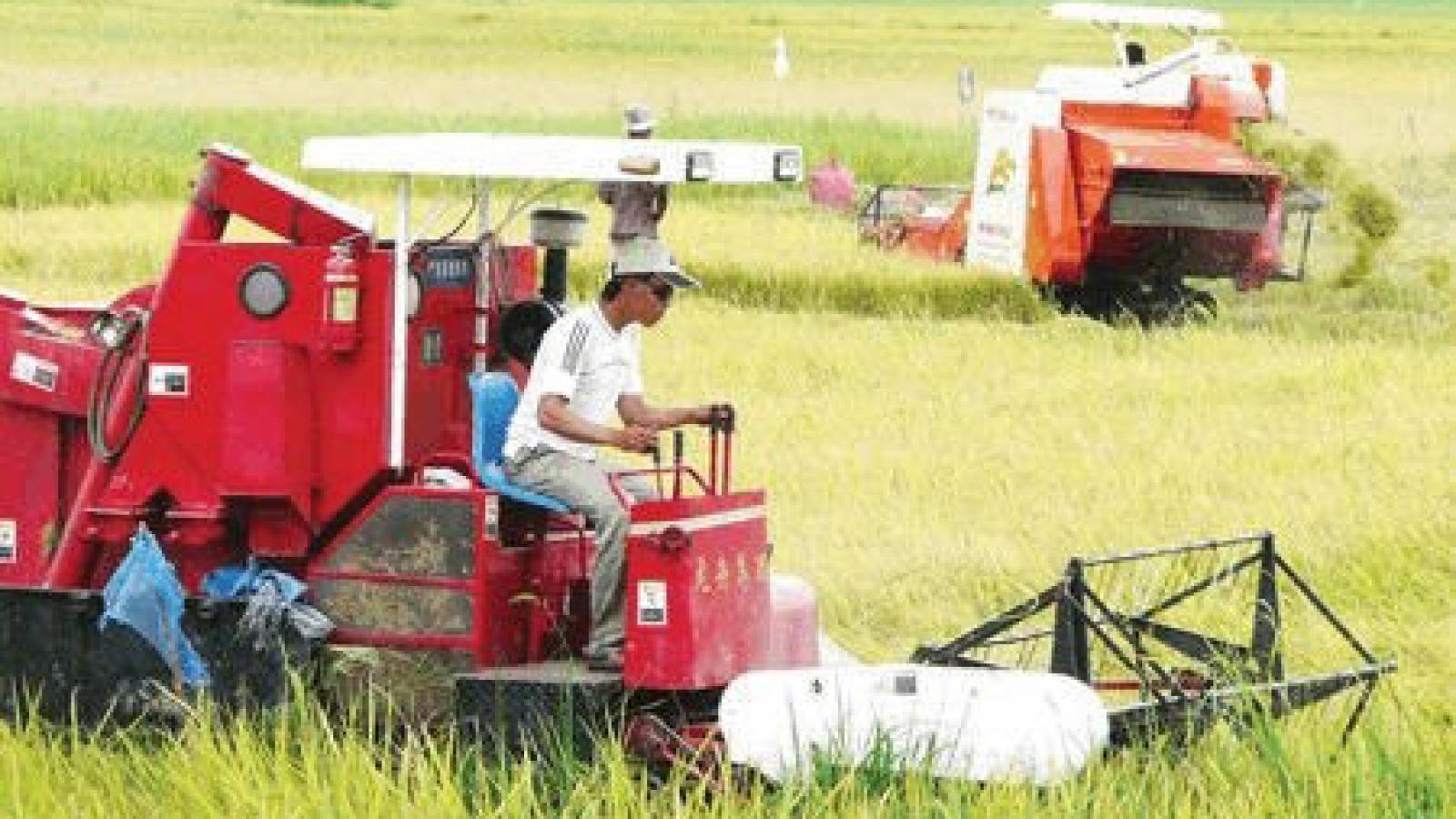 Mekong Delta should build logistics chains to boost exports