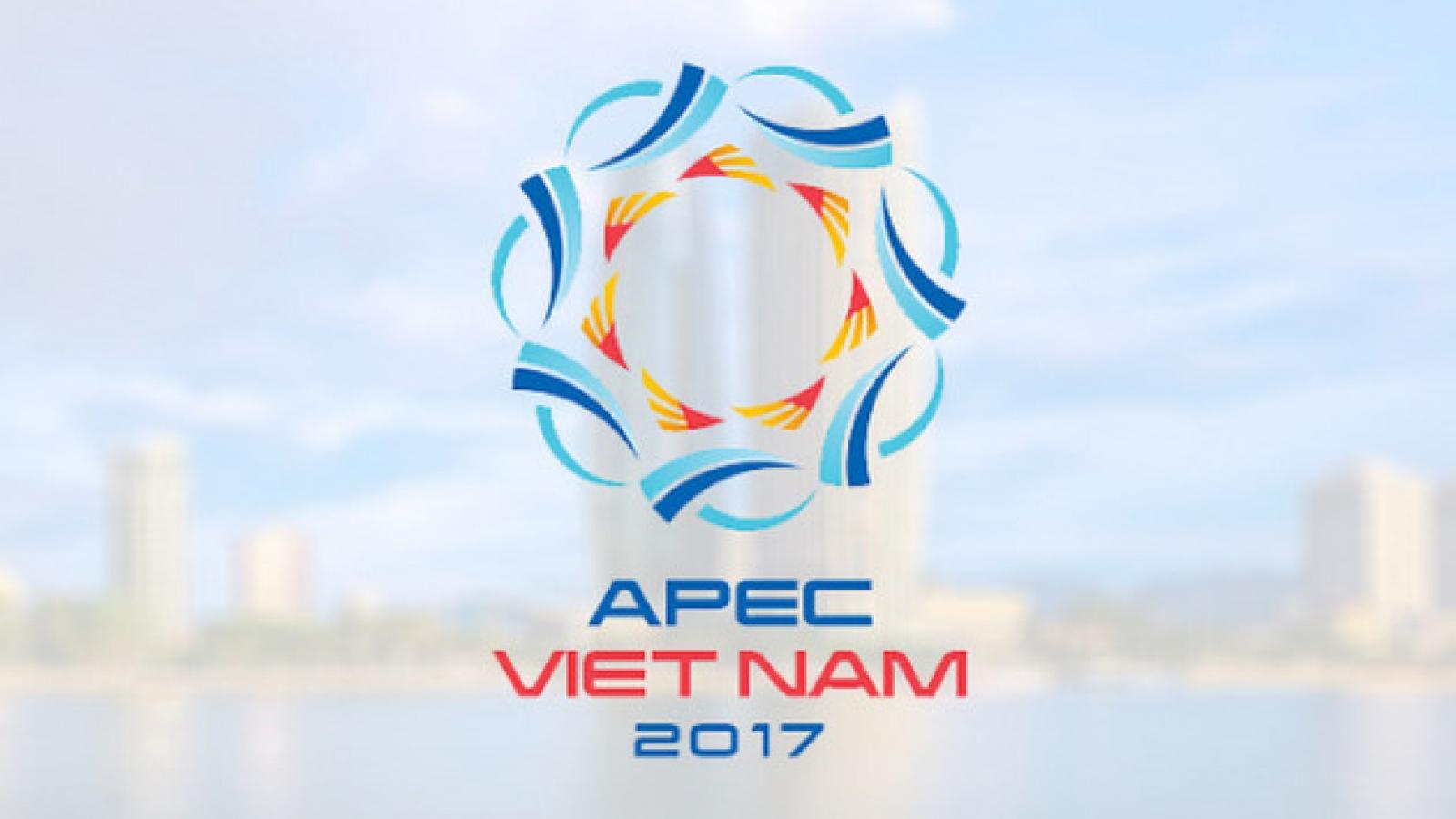 APEC grasps new trends, heads to sustainable development