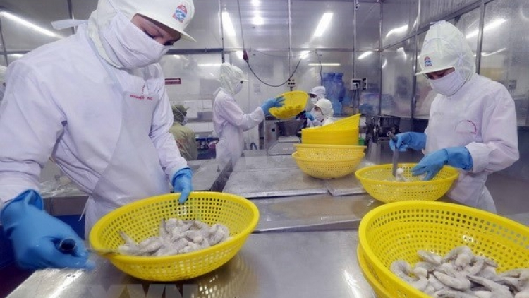 Aquatic product exports fetch US$5.5 billion in 8 months