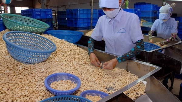Binh Phuoc attracts US$31.8 million in foreign investment