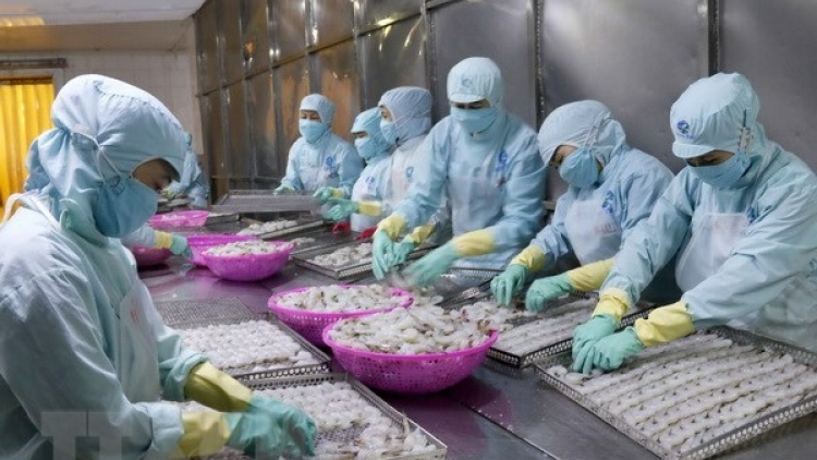 China's reduced import tax boosts Vietnam's tra fish export