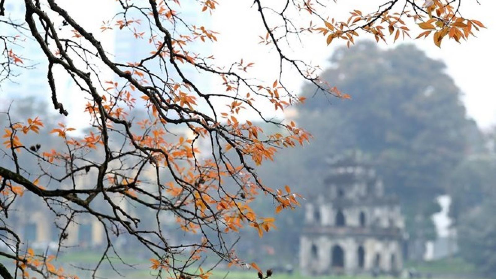 Hanoi listed in Top 25 global destinations by TripAdvisor