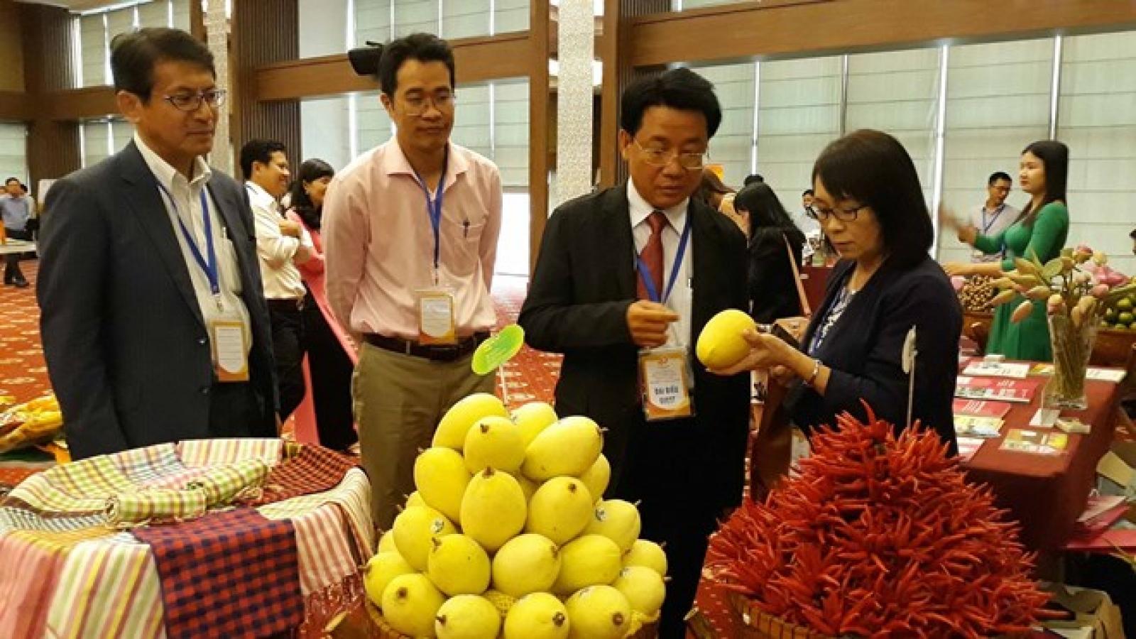 Ambassador affirms Japanese investors' interest in Mekong Delta