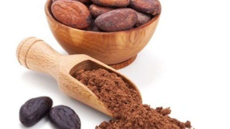 First batch of Vietnamese organic cocoa exported to Japan