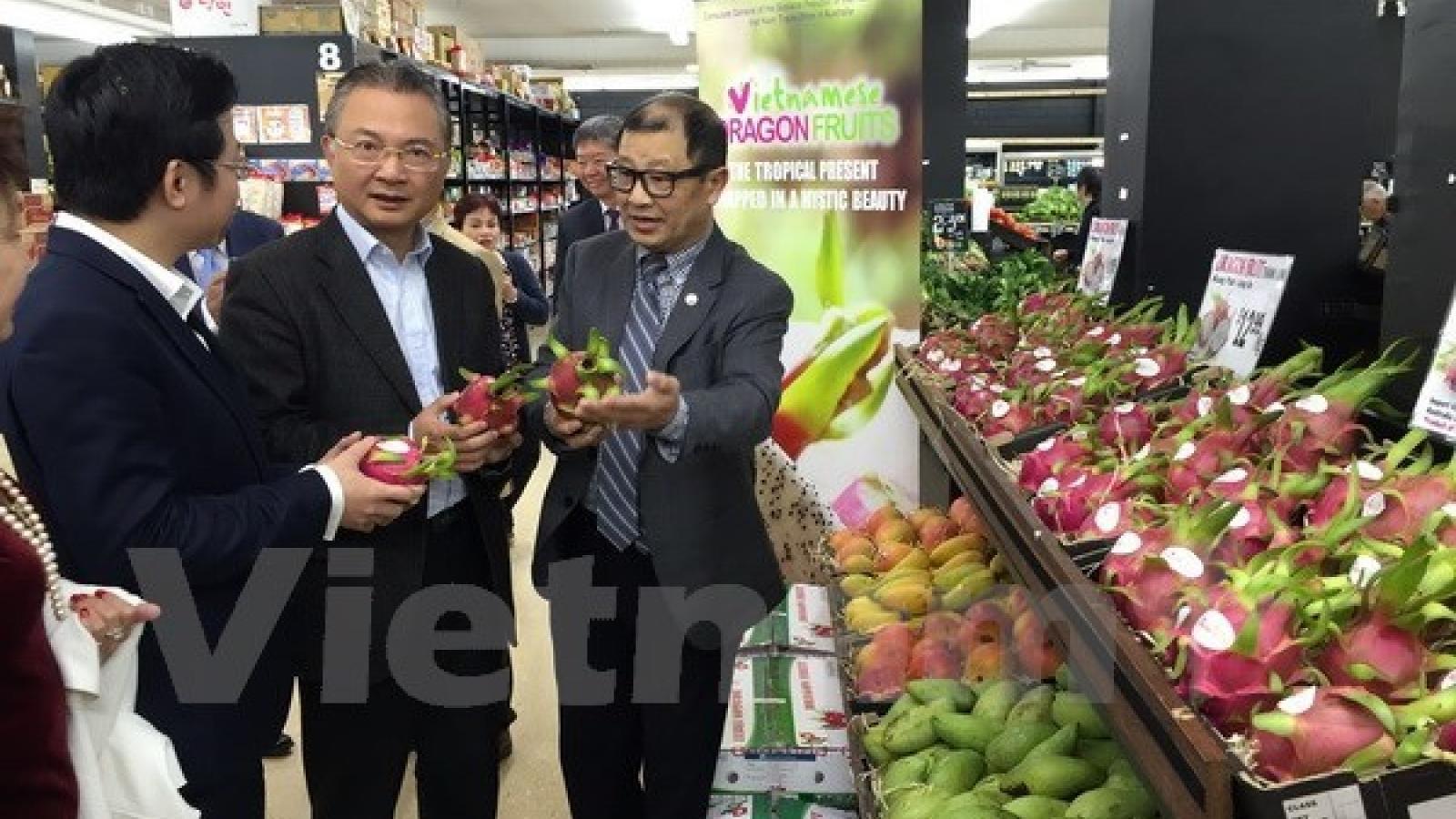 """Vietnamese Dragon Fruit Day"" goes vibrant in Australia"