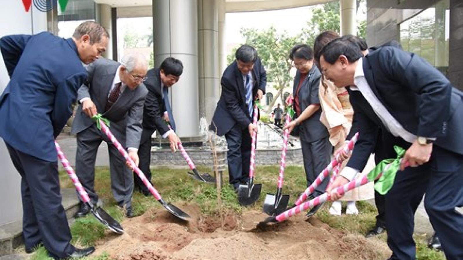 Japan presents 100 cherry trees to VOV