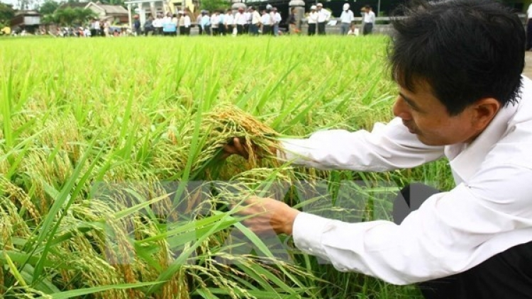 Solution sought to assist farmers in adapting to TPP