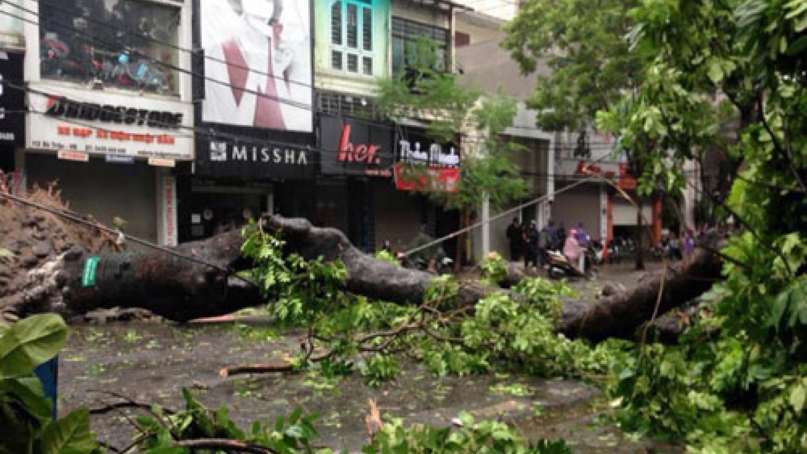 Vietnam set for super-stormy typhoon season