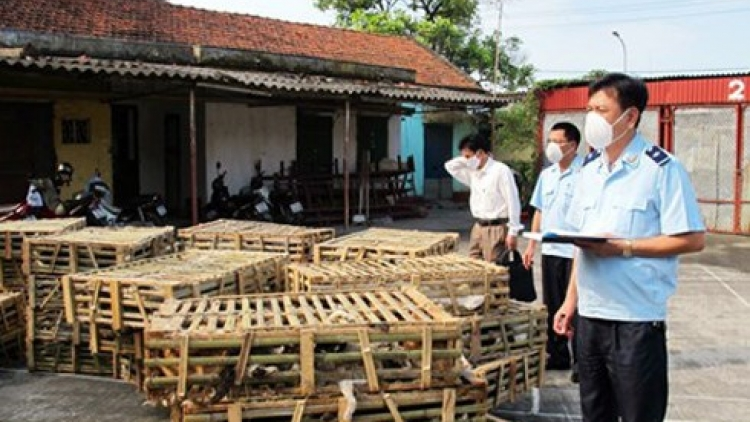 Vietnam to destroy 1 ton of live cats, chicken smuggled in from China