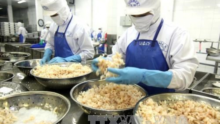 Mekong Delta businesses study impacts of AEC, TPP