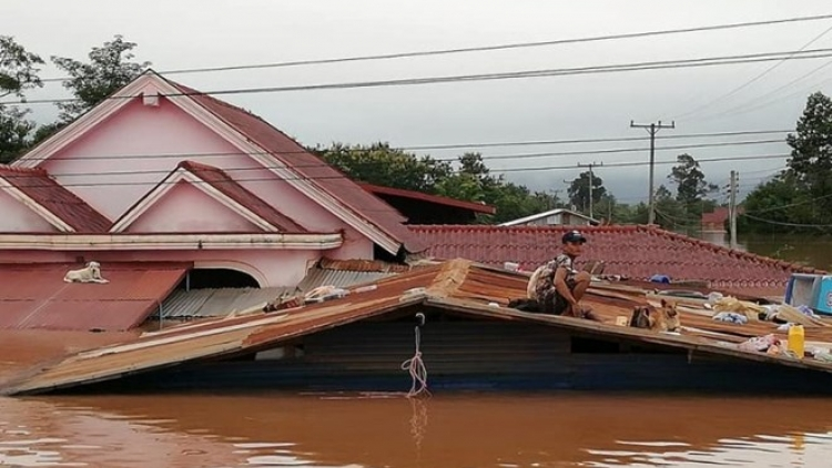 VFF President extends sympathy over Laos' dam collapse