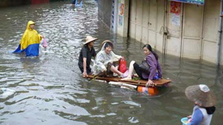 Improving Vietnam resilience to natural disaster