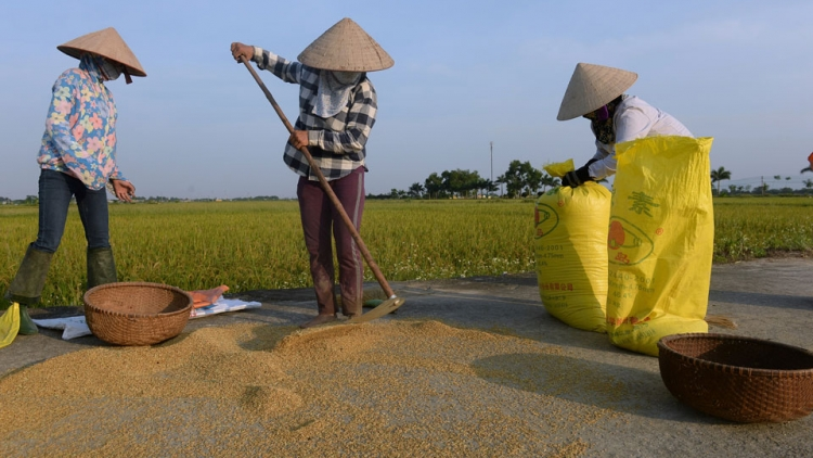 Achieving sustainable food security