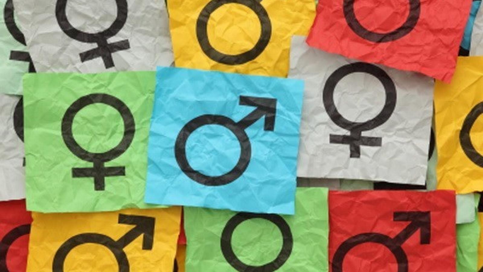 Social determinants of gender inequality in Vietnam