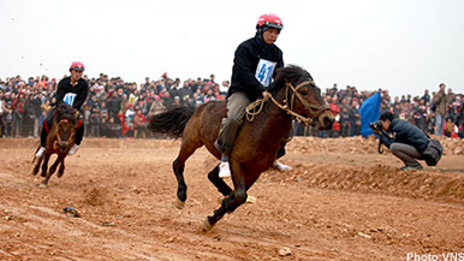 Hanoi hosts traditional Bac Ha horse racing