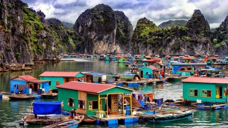 Protecting Ha Long Bay's aqua resources