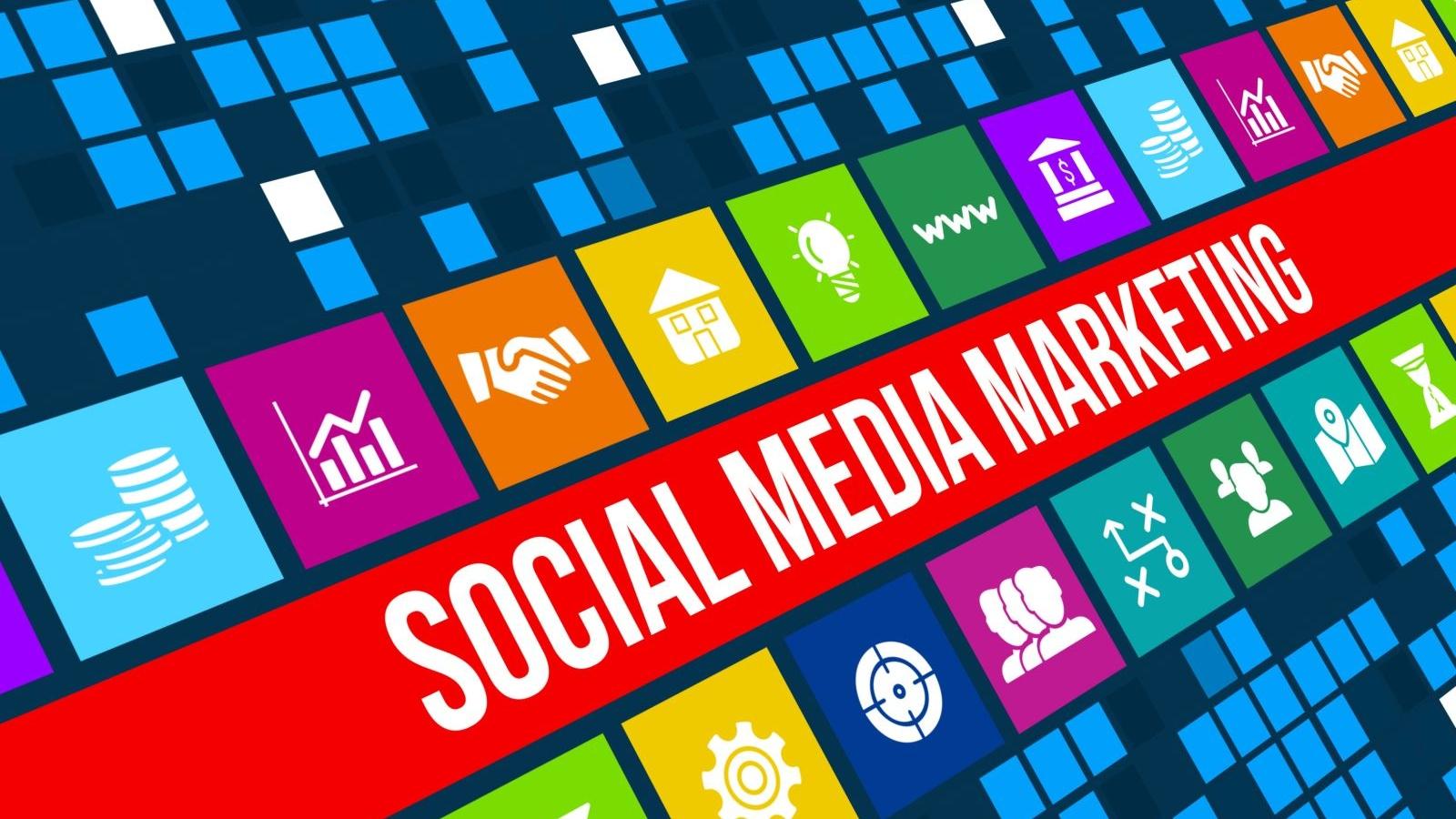 Which segments dominate Vietnam online marketing?