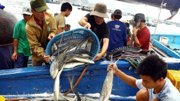 Labour export opportunities for fishermen from central provinces