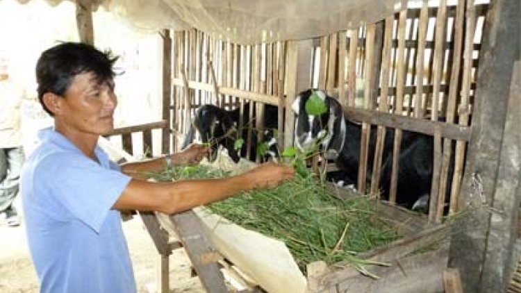 Project on climate change adaptation benefits Ben Tre province
