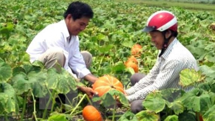 Agriculture sector targets US$33 billion from exports in 2017