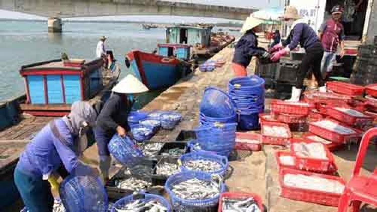 Central fishermen receive support following mass fish deaths