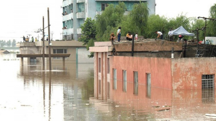 Vietnam Red Cross provides relief aid to DPRK's flood victims