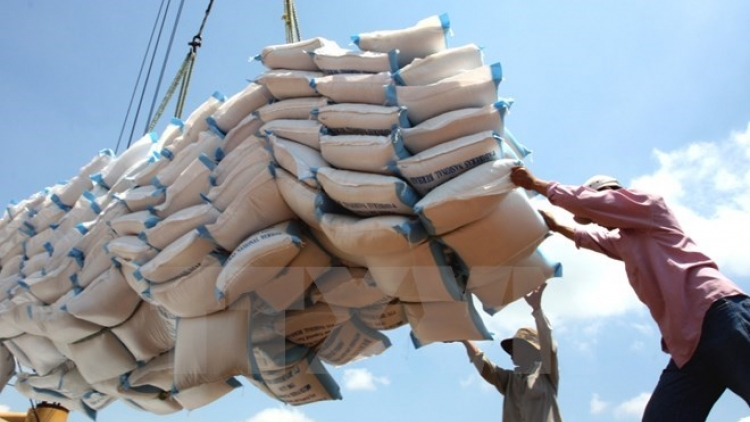 Vietnam earns US$2.2 billion from rice export this year