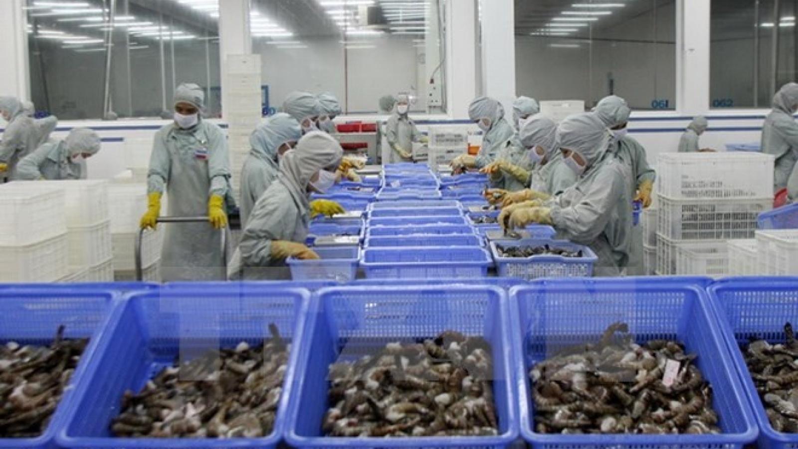 EU becomes Vietnam's top shrimp importer