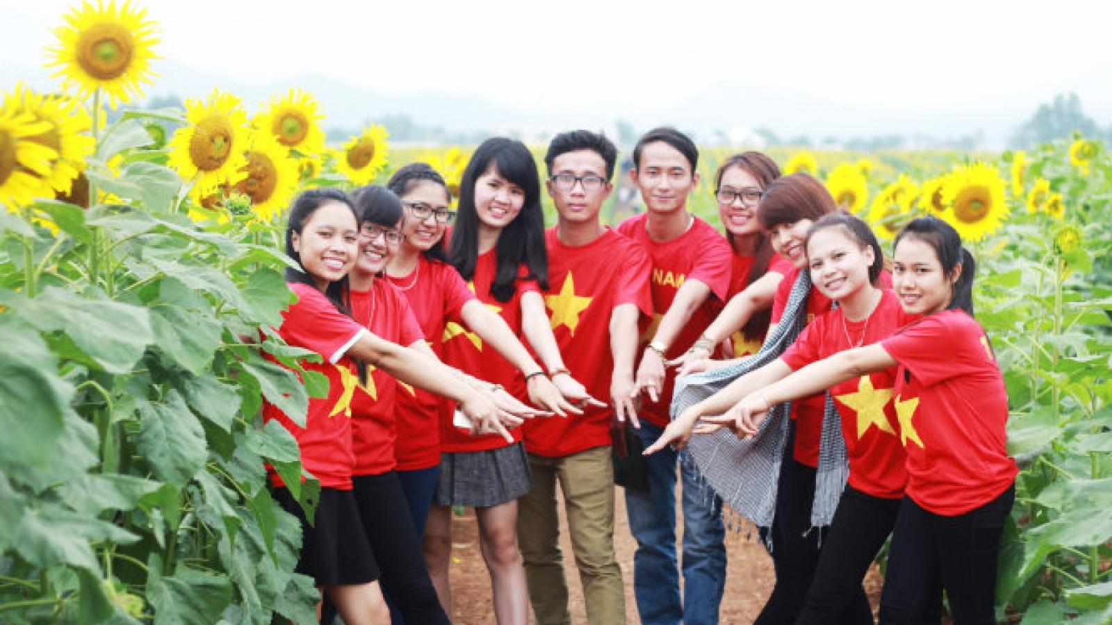 Nghe An to host Vietnam's biggest sunflower festival
