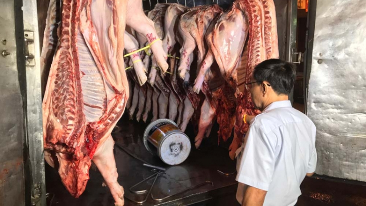 First outbreak of African swine fever detected in HCM City