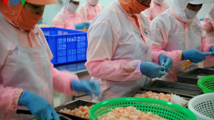 Shrimp exports set to capitalise on EVFTA opportunities