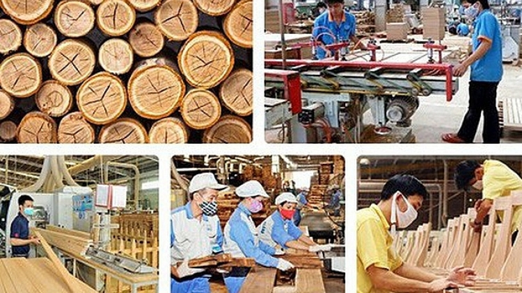 Timber companies in Vietnam: seizing the opportunity