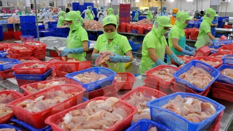 Tra fish export: China lucrative market but high risk