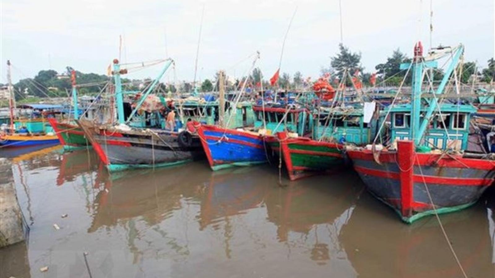 Ninh Thuan urged to prepare for typhoon Pabuk