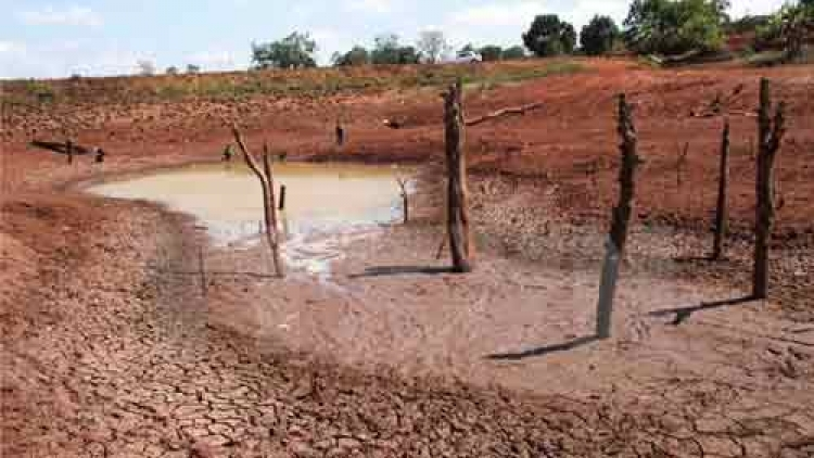 Int'l organisations to assist drought-affected localities