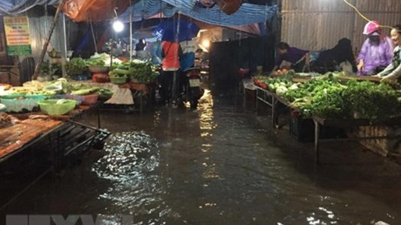 Red River Delta fights floods