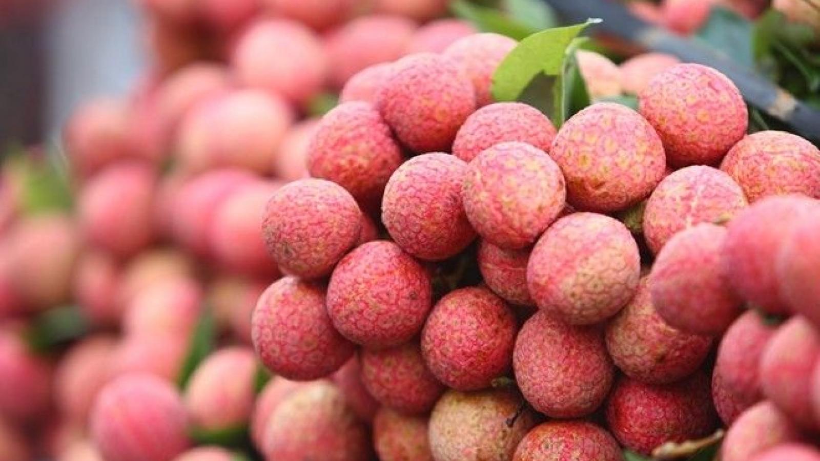 Vietnamese fresh lychees enter Thailand