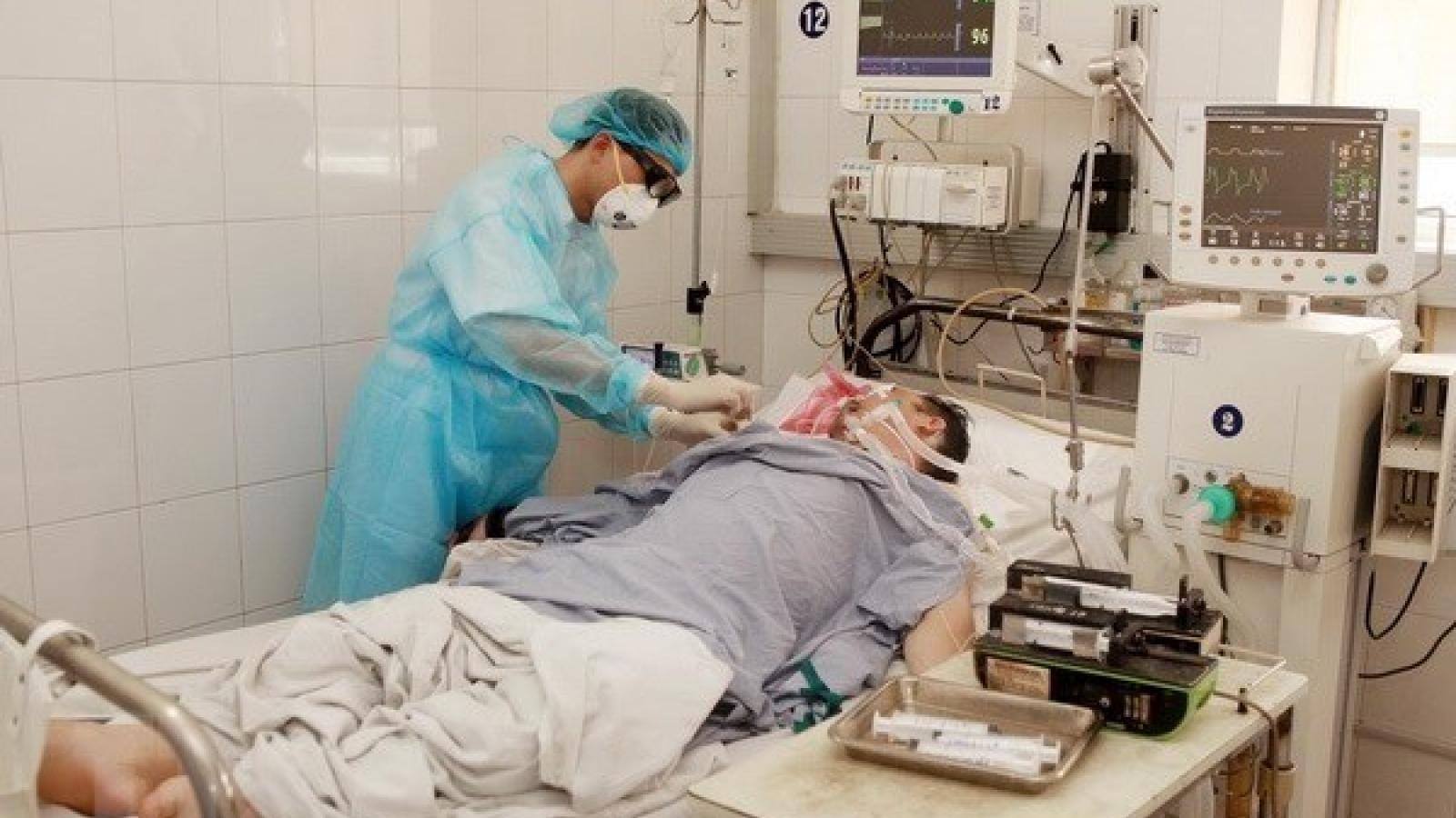 Mekong Delta on alert against swine flu