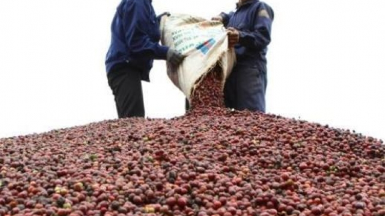 Vietnam's import-export sector faces more challenges
