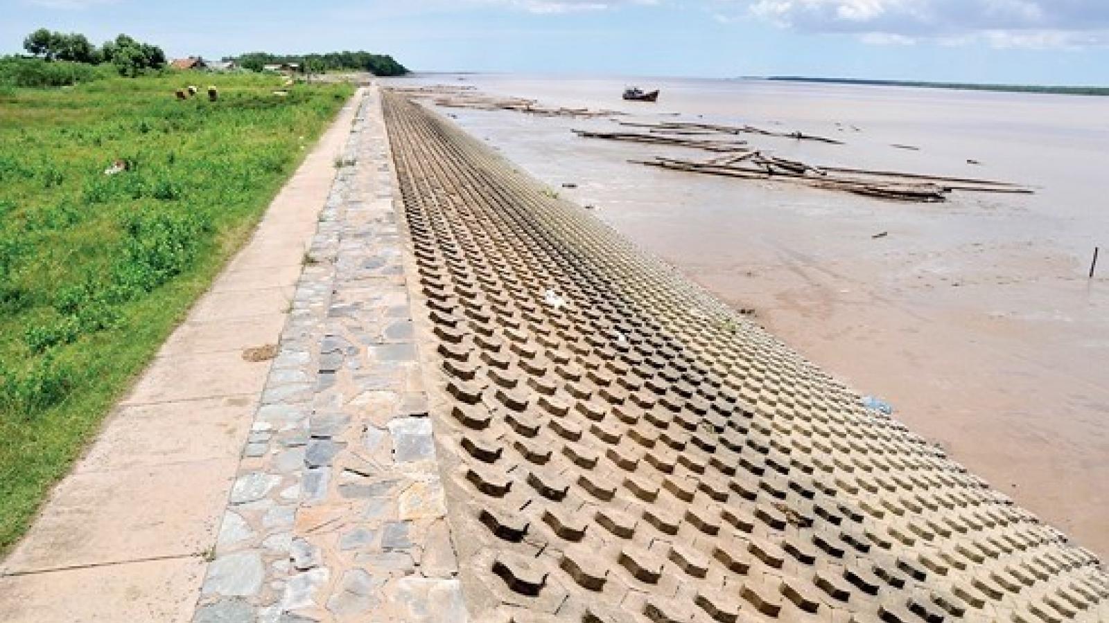 HCM City's sea dyke aims to stop waterlogging