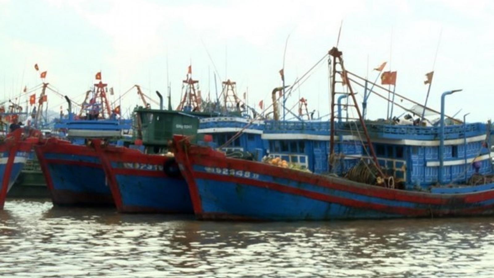 Vietnam, China negotiate cooperation in less sensitive marine areas