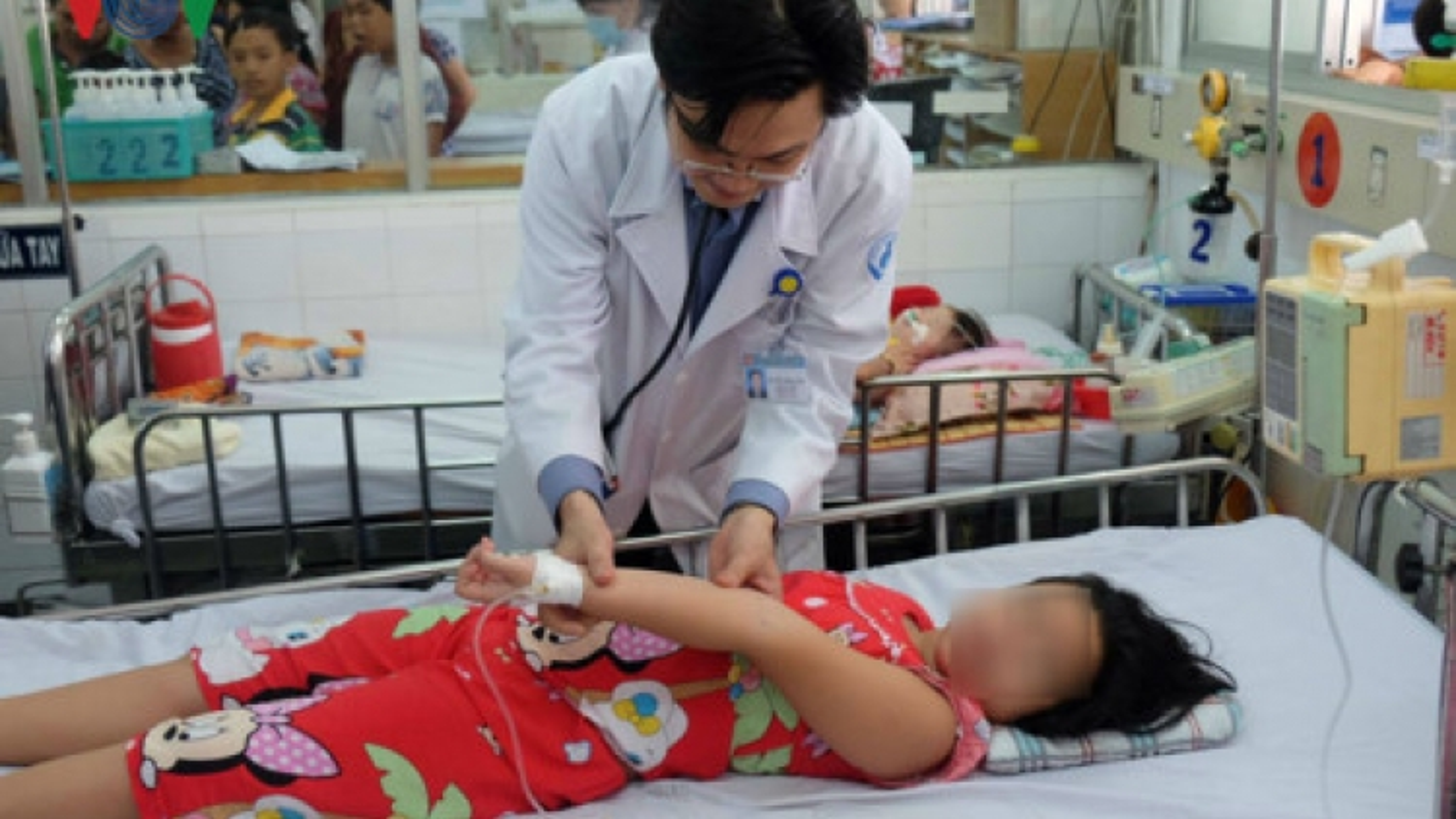 HCM City declares health emergency over dengue fever