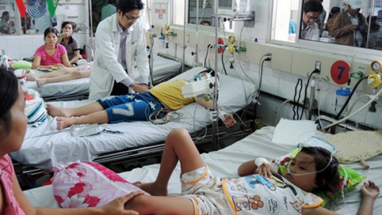 Dengue outbreak in Danang is worse than previous years