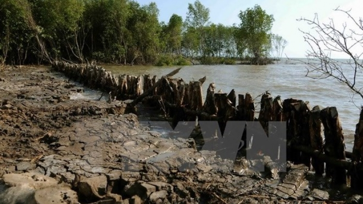 Tien Giang builds sluices to fight saline intrusion