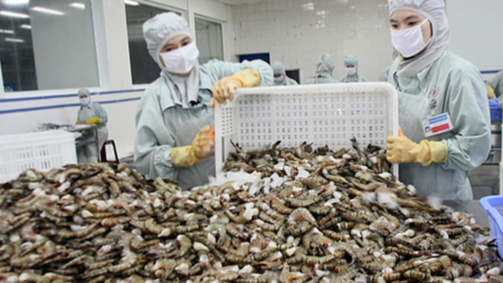 Bottom falls out of US market as Vietnamese shrimp sales plummet