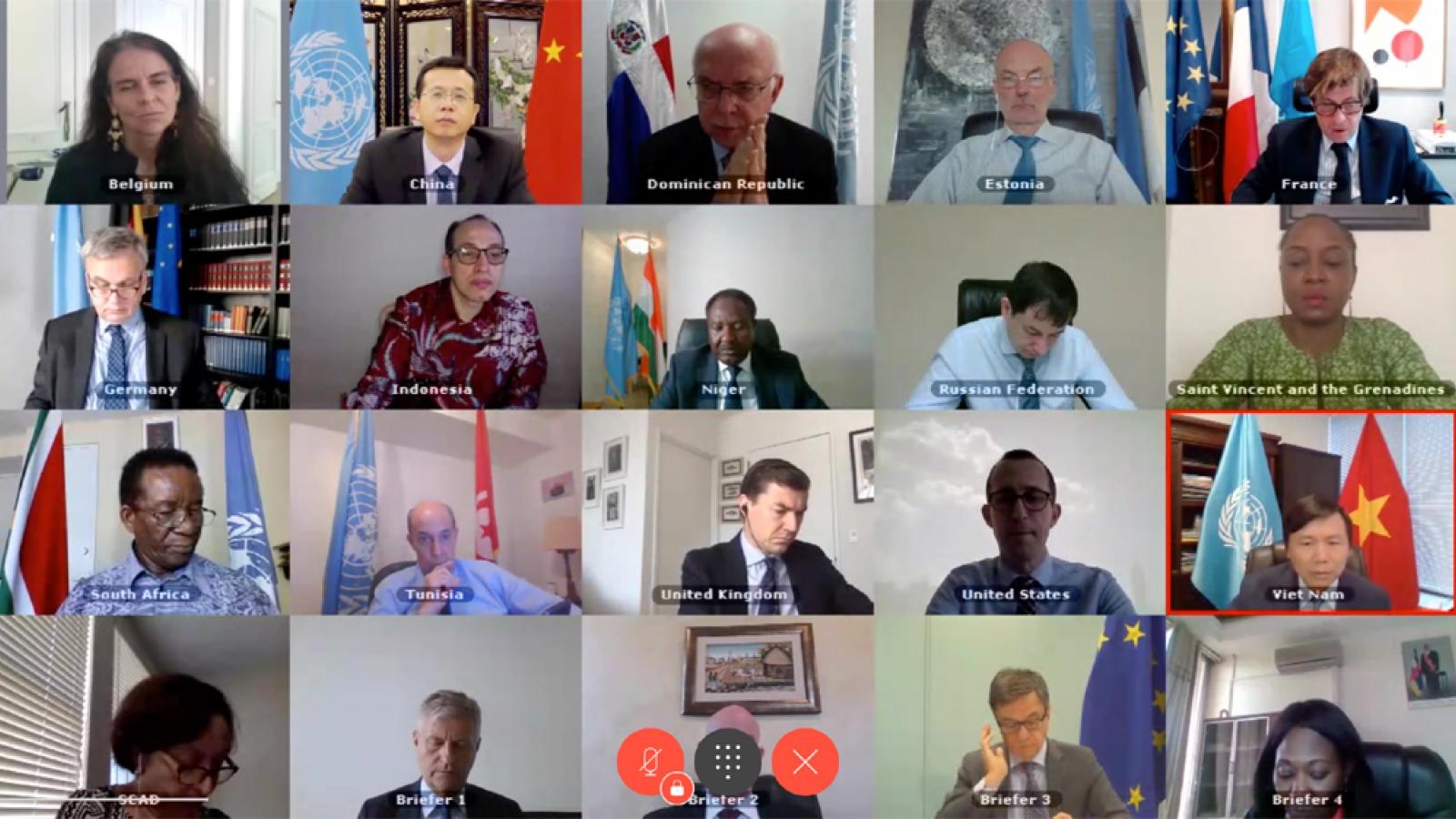 Hội đồng Bảo an thảo luận về tình hình tại Cộng hòa Trung Phi