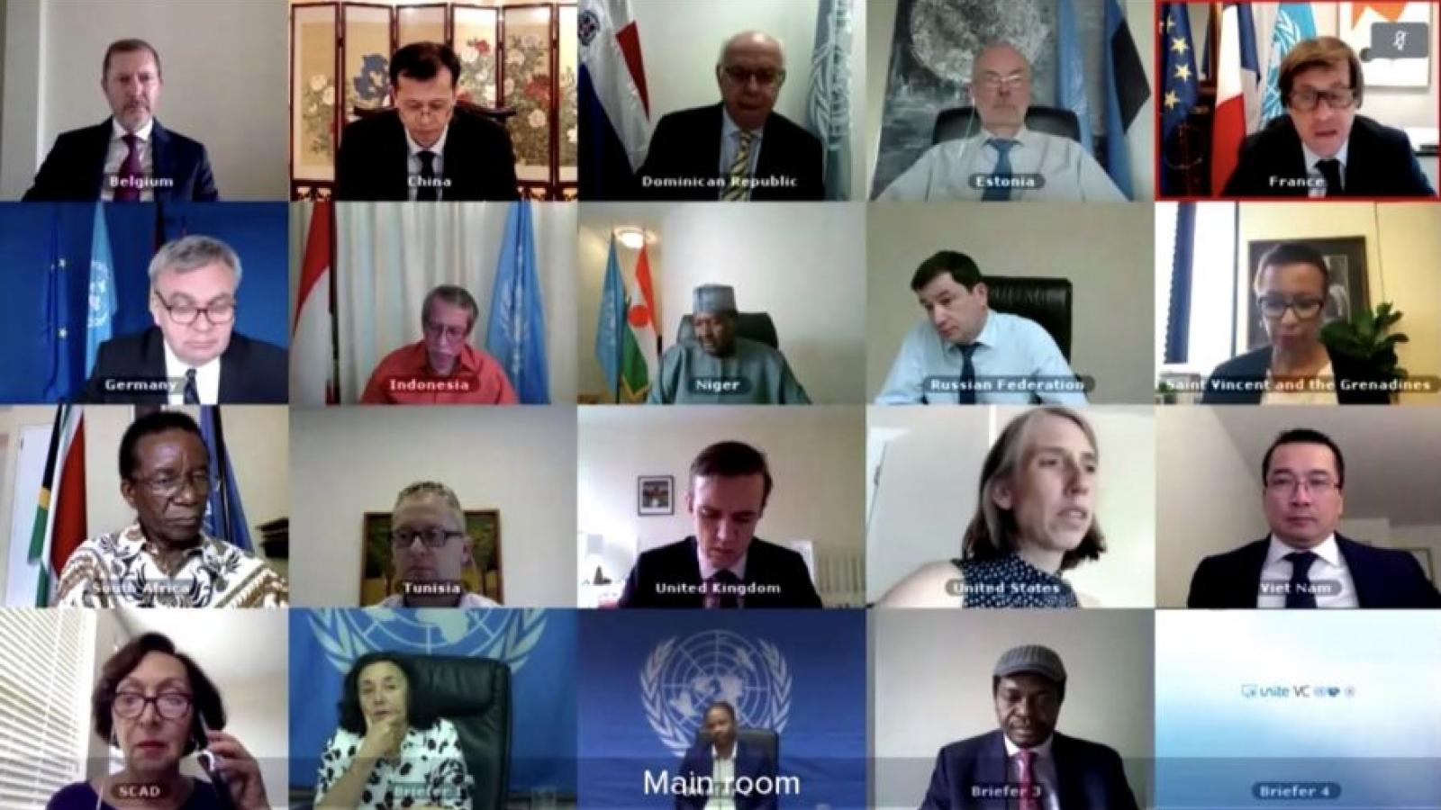 HĐBA thảo luận về thách thức an ninh tại miền Đông CHDC Congo